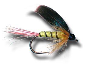 McGinty濡れFlyフライ釣りフライ Size Size 12 B00KD7JO1Q - Pack 3 Pack B00KD7JO1Q, 北安曇郡:27b53bfb --- sharoshka.org