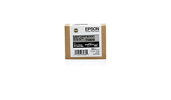 Epson Stylus Pro 3880 - Original Epson C13T580900 / T5809 - Light ...