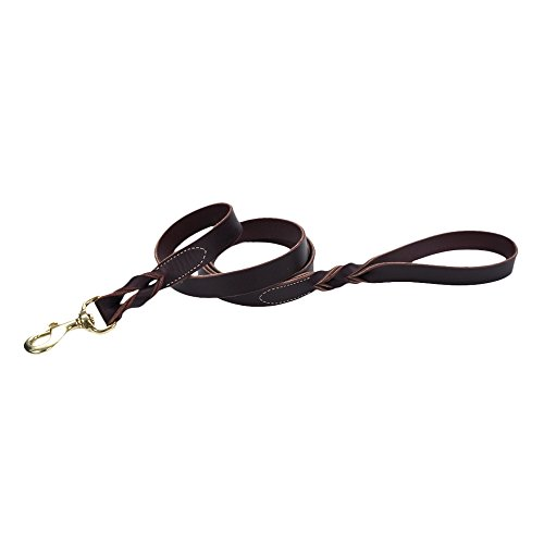 Coastal Pet Products Circle T Leather Twist Dog Leash with Solid Brass Hardware, 1