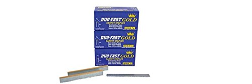 5418 D 9/16 Inch LONG 20 Gauge 3/16 Crown Gold Staples - Three BOXES OF 5,000 by Duo-Fast