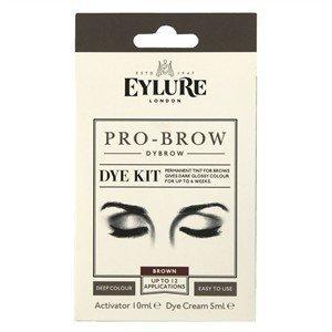 Amazon.com : Eylure Dylash - Eyebrow Dye Kit 45 Day - Dark Brown ...
