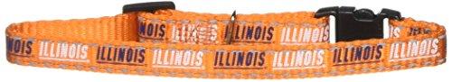 Pet Goods Manufacturing NCAA Illinois Illini Cat Collar, 3/8 x 8-12