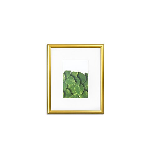 Vista Kayan 8 X 10  Picture Frame  Thin Profile In Gold  Wide Mat W 4 X 6  Opening