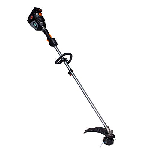 Scotts Outdoor Power Tools LST01562S 62-Volt 15-Inch Cordless String Trimmer, 2.5Ah Battery Fast Charger Included