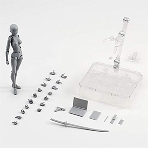 MiaoDuo Body Kun DX Set Male & Female Action Figure Model Set for SHF Body Kun Doll PVC Body-Chan DX Set 2.0 (Grey Women) (Max Factory Figma Archetype Next Male Action Figure)
