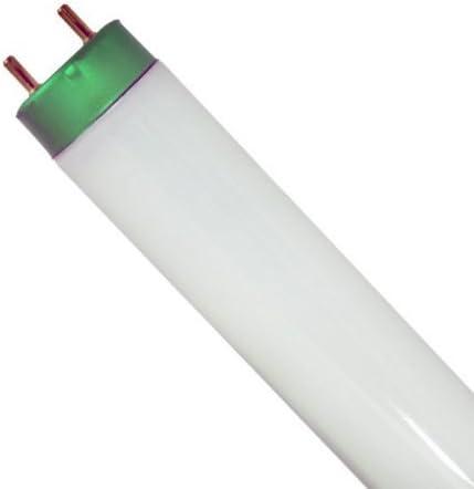 Case of 30 NEW F32 T8 Sylvania Fluorescent Bulb 5000K - T8 Shatterproof Lamp