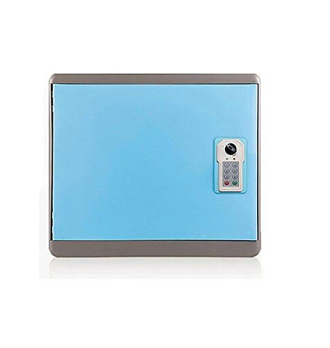 宅配ボックス 簡単設置 [Amazing無人宅配ボックス] (BLUE) 宅配便 宅配ロッカー 実用性 2段タイプ 安全に宅配受信 一戸建て用 デジタル式鍵 玄関式 B073NZ49W7 15000 BLUE BLUE