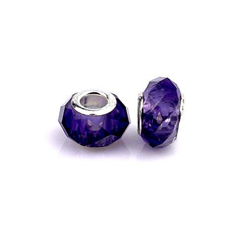Salome Idea 10PCS Rhinestone Charms, Large Hole Beads for European Style Bracelets, (Purple)