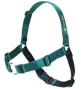 SENSE-ation No-Pull Dog Harness (Green, Medium/Large Wide)
