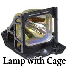 C40 Sp Lamp - 8