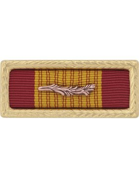 Vietnam Cross of Gallantry with Palm Army Unit Citation (Ribbon and Frame) (Gallantry Palm Of Vietnam With Cross)