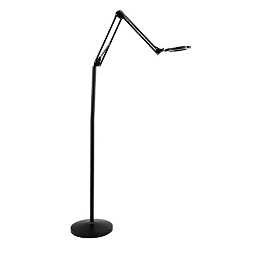 Modern Minimalist with 2 Lighting Modes Piano Light Fishing Floor Lamp, Vertical High Transparent PVC Lamp Shade Beauty Tattoo Floor Light, Creative Study Office LED Eye-Cared Floor Lamp -