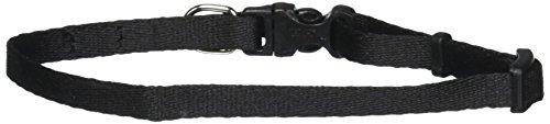 Coastal Pet Products DCP222BLK 5/16-Inch Nylon Pals Dog Collar, X-Small, Black (Coastal Nylon Jewel Collar)