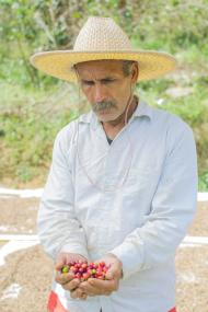 Coffee Farmer in Venezuela with Beans