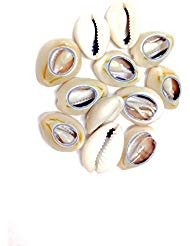 Price comparison product image Sea Shell Cutted Hair Beads Cowrie Rasta Dreadlock Braid Decoration Beads Braiding[12pcs]