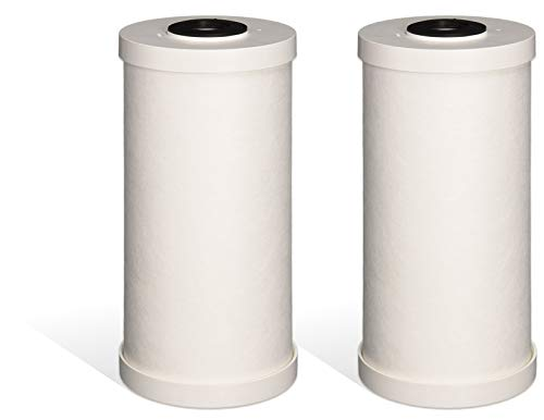 Fette Filter – Premium Heavy Duty Sediment Replacement Cartridge Compatible with GE FXHTC. Also Compatible with RFC-BBSA. 2-Pack