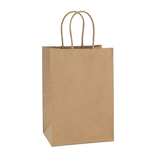 BagDream Kraft Paper Bags 100Pcs 5.25x3.75x8 Inches Small Paper Gift Bags with Handles Bulk, Paper Shopping Bags, Kraft Bags, Party Bags, Brown -