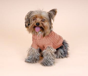 Pooch+Plus™ Cinnamon Twist Sweater / Medium 14