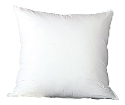 Pinzon Body Pillow with Cover: Amazon