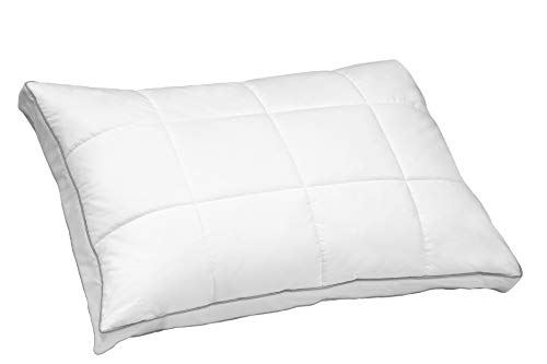 BlueRidge Home Fashion Zurich Goose Feather and Down Quilted Compartment Jumbo in White Color Down Down - Pillow Zurich Bed