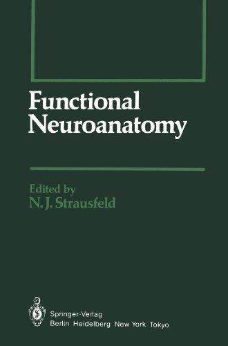 Functional Neuroanatomy (Springer Series in Experimental Entomology)