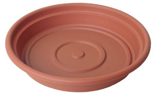 Bloem SDC1646-6 6-Pack Dura Cotta Plant Saucer, 16-Inch, Ter