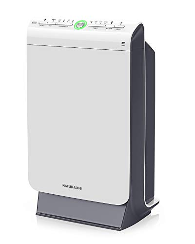 Naturalife True HEPA Air Purifier, 4 Stage Filtration and Ionization System for Large Rooms up to 376 sq.ft, Home Air Cleaner for Allergens, Smoke, Odors, Mold, Dust, Germs, Pet Dander, Auto Pollution