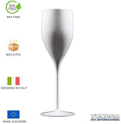 TUNDRA ICE INTERNATIONAL 6 Piezas Flauta 18 Cl en Policarbonato (Plástico Rígido), Copas de Vino 100% Italian Design, Vasos Irrompibles, Reutilizables y Aptos para Lavavajillas, Blanco