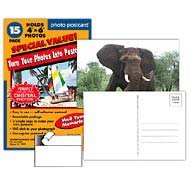 Make-Your-Own 4x6 Photo Postcards; 12+3 Pack ()