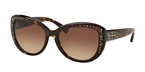 COACH Women's 0HC8162 Dark Tortoise/Dark Brown Gradient - Case Coach Sunglasses