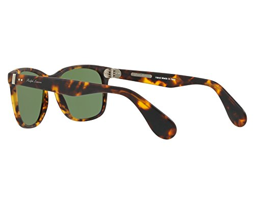 Ralph Lauren lunettes de soleil carrées en sablage de la Havane RL8162P 513452 56 Green Havana