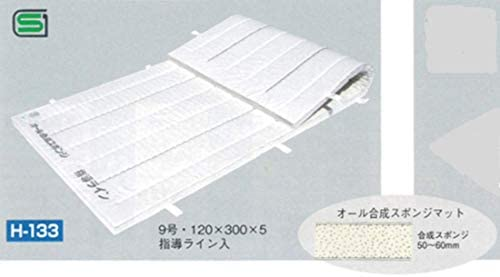 F122 スポンジコンビマット 園児用 1枚 120×240×5cm watanabe mat 製品安全協会認定品