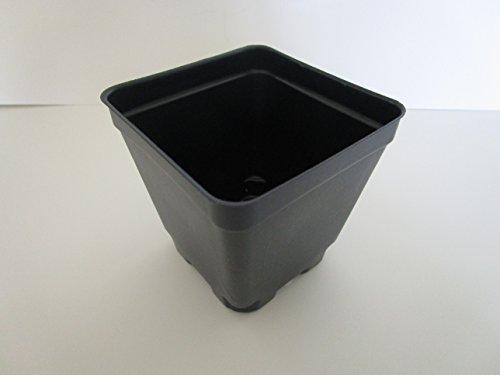 Landmark Plastics 3.5'' Square Plastic Nursery Press Fit Pots By (48) by Landmark Plastics