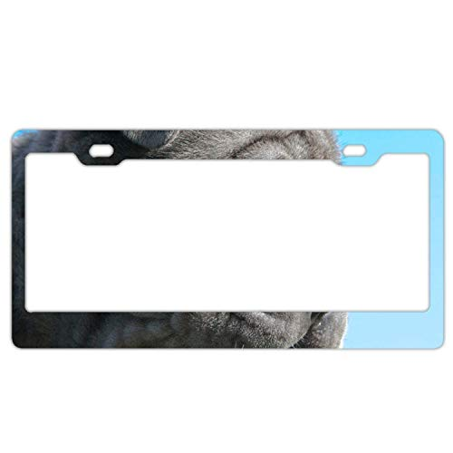 Eletina Star Parrot Cage Sit Crest Coat License Plate Frame with 2 Holes