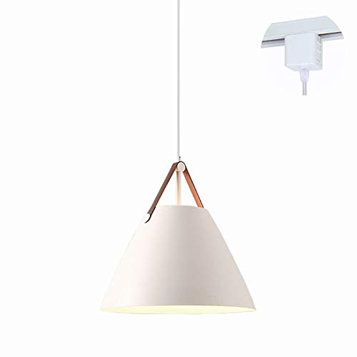 Hanging Pendant Lights On A Track