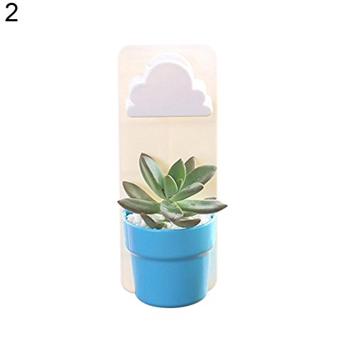 Afco Wall Hanging Plant Pot,Rainy Cloud Creative Auto Watering Flowerpot Home Garden Bonsai Decor size 7.1cm x 5.7cm x 18cm (2#)