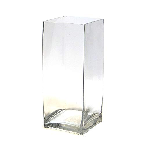 """Concord Global Trading 12"""" Rectangle Glass Block Vase - 12 Inch High Clear Square Pillar Centerpiece - 12x5x5 Candleholder from Concord Global Trading"""