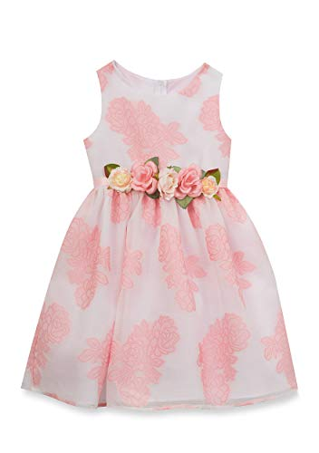 Rare Editions Floral Patterned Dress Girls 4-6x (6X)