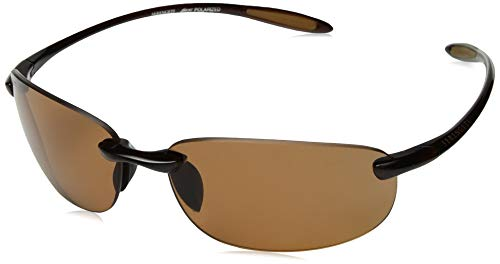 Serengeti Nuvino Polar Sunglasses,Shiny Brown with Drivers ()