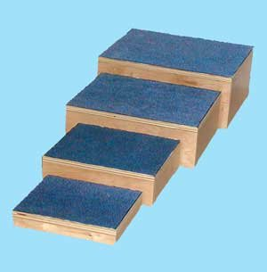 Therapy Steps by MTS Medical Supply