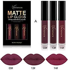 Tenworld 3PCS Sexy Lip Gloss Kit Waterproof Matte Liquid Lipstick (A)