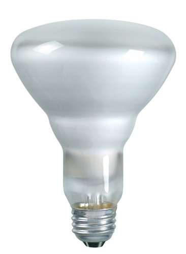 Philips 248765 Soft White 65-watt BR30 Indoor Flood Light Bulb, 12-Pack - Indoor Reflector