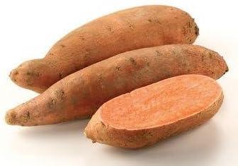 SVI Frische 50pcs S/ü/ßkartoffel Gem/üsesamen f/ür Orange Einpflanzen
