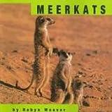 Meerkats (Animals)