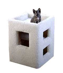 Kitty Sleeper Cube : Color GREEN : Size 22 INCHES, My Pet Supplies