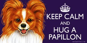 Papillon White and Red Dog Gift - 'KEEP CALM' LARGE colourful 4' x 8' MAGNET - High Quality flexible magnet for indoor or outdoor use for your Fridge, Car, Caravan or use on any flat metal surface -Water proof and UV resistant. Car-Pets Ltd