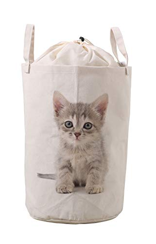 LifeCustomize Large Canvas Laundry Hamper Small Gray Kitten Cat Print Clothing Storage Bins Boxes Toy Organizer Nursery Folding Baskets with Handles (Laundry Hamper Cat)