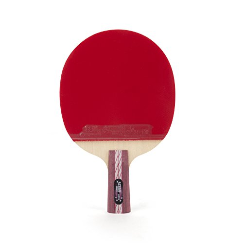 DHS Ping Pong Paddle A4006, Table Tennis Racket - Penhold with Landson Wrist Support