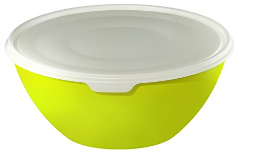 Rotho 1797305070 Schüssel mit Deckel, ideale Salatschüssel, perfekt für Aufbewahrung und Transport BPA-frei, Inhalt 8 L, circa 35,5 x 35,5 x 15,5 cm, grün / transparent