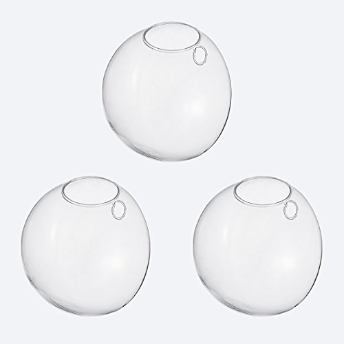 (NewDreamWorld's Pack of 3 Wall Hanging Planters Wall Bubble Terrarium Wall Mounted Bubble Glass Fish Bowl Glass Wall Vase for House Art Wall Decor (3pcs small, oblique openning))